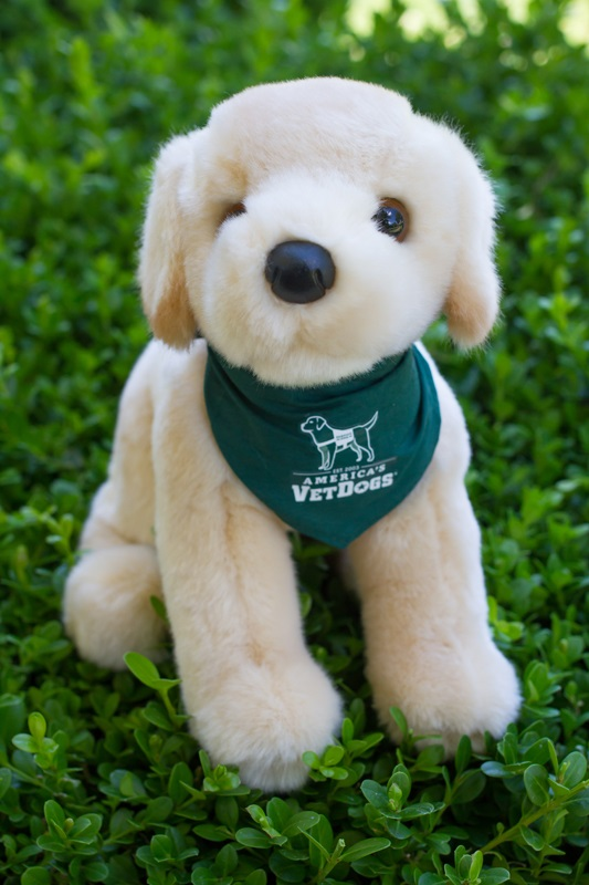 America's VetDogs Yellow Lab in Green Bandana