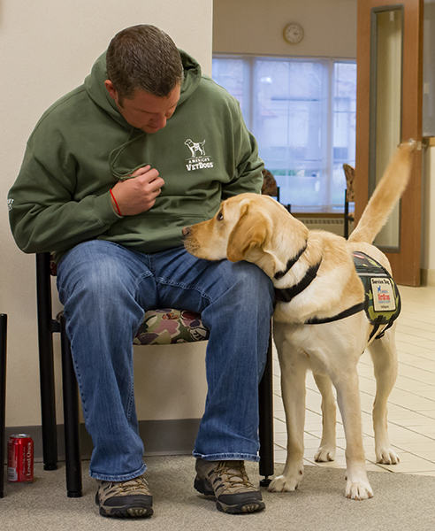 Ptsd Service Dogs For Veterans Americas Vetdogs